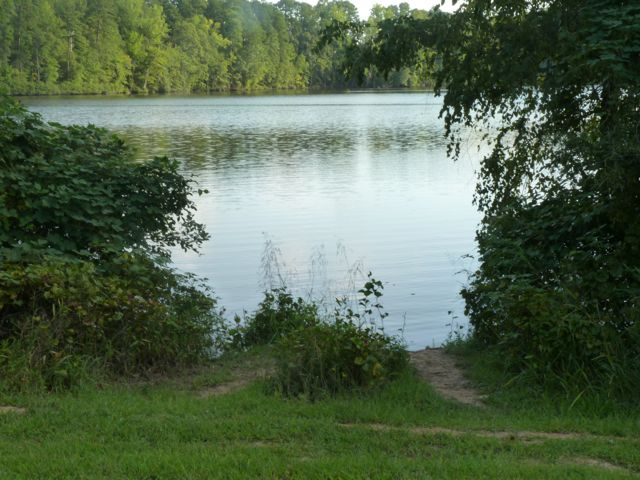 Lake raleigh for Fishing in raleigh nc