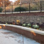 Some of the new plantings and stonework around the park