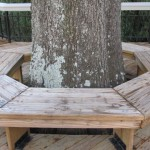 A bench you'll pass on your stroll around Lake Howell