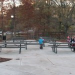 Picnic tables near the cafe